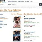 #2 Hot New Gay & Lesbian Lit on Amazon!