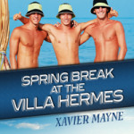 "MM Good Book Reviews: In Spring Break at the Villa Hermes, ""Brandt and Donnelly are still so damn hot together"""